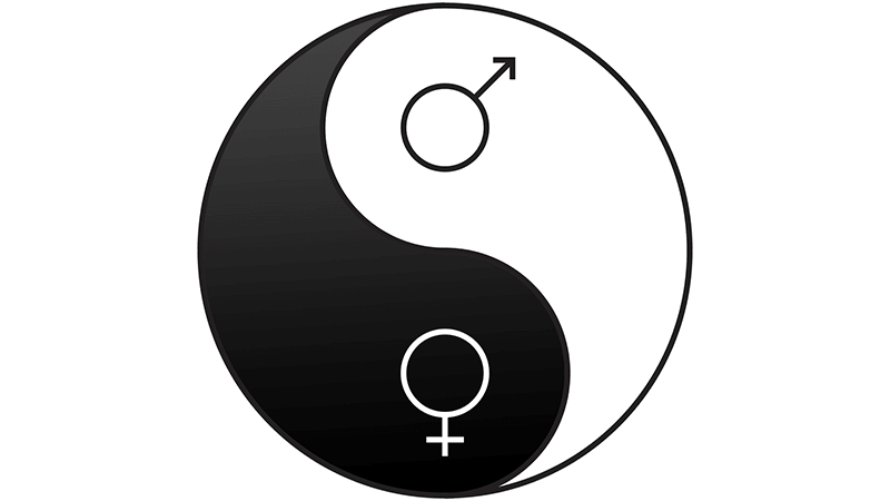 Yin Yang Husband Wife Equality