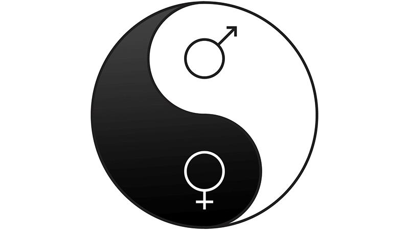 Bisexual yin yang equality