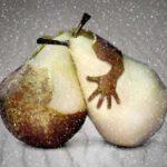 Hugging pears make upside-down heart